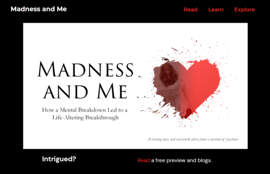 Madness and Me (home page screenshot)