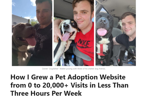 How I Grew a Pet Adoption Website from 0 to 20,000+ Visits in Half a Year (LinkedIn Pulse article screenshot)